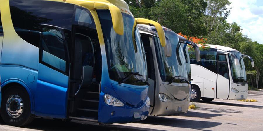Nortempo lidera el servicio de acompañamiento en el transporte escolar de Galicia